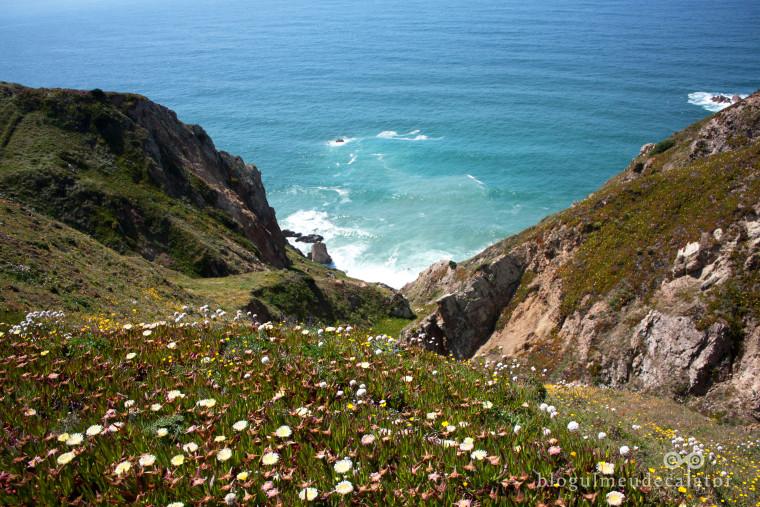 cabo da roca-stanci si flori