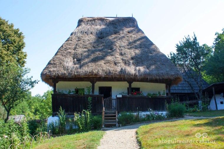 casa cu acoperis de paie