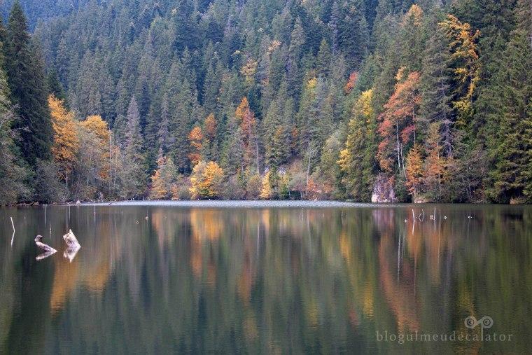cheile bicazului-Lacul-Rosu