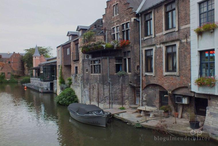 barcuta in Gent