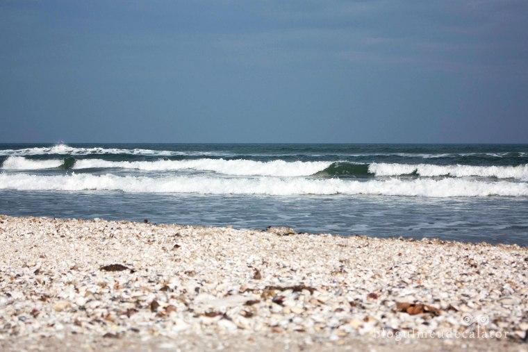 valuri pe plaja mamaia