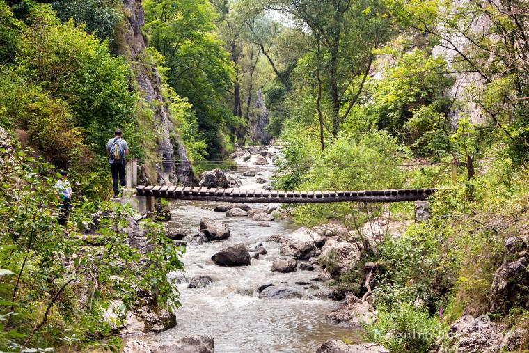 pod pe trasul din cheile turzii