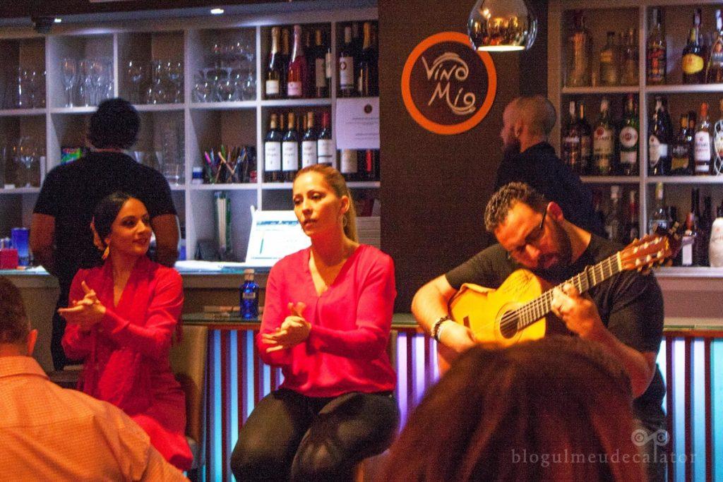 trupa de flamenco la Vino Mio