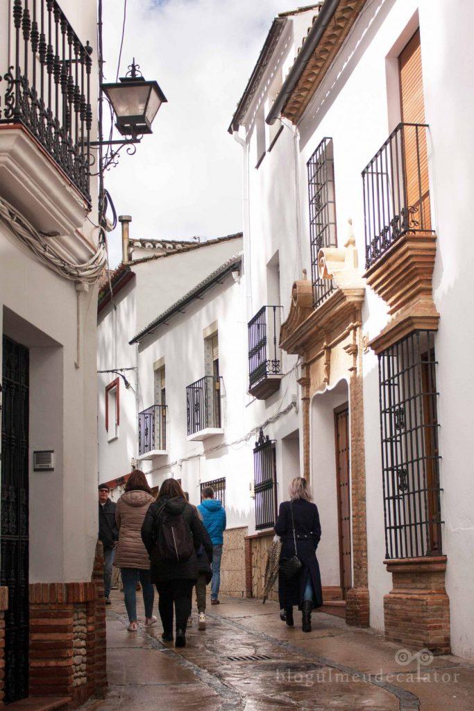 Setenil de las Bodegas, Spania-satul alb săpat în stâncă