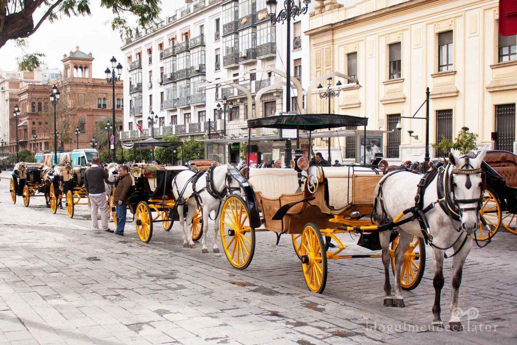 vacanta în sudul spaniei