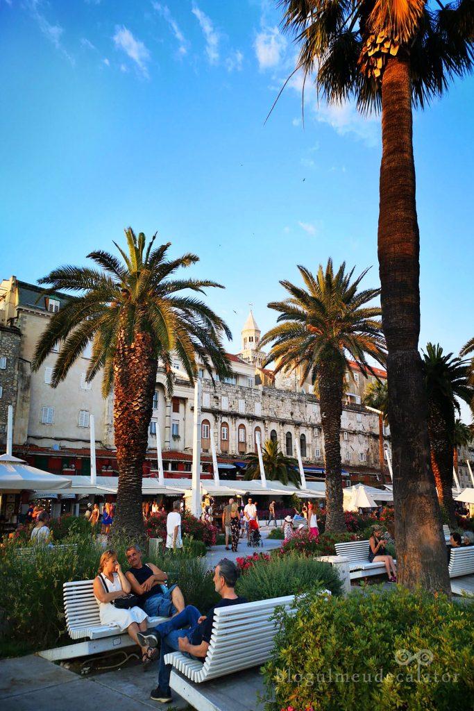 palmieri pe faleza din Split