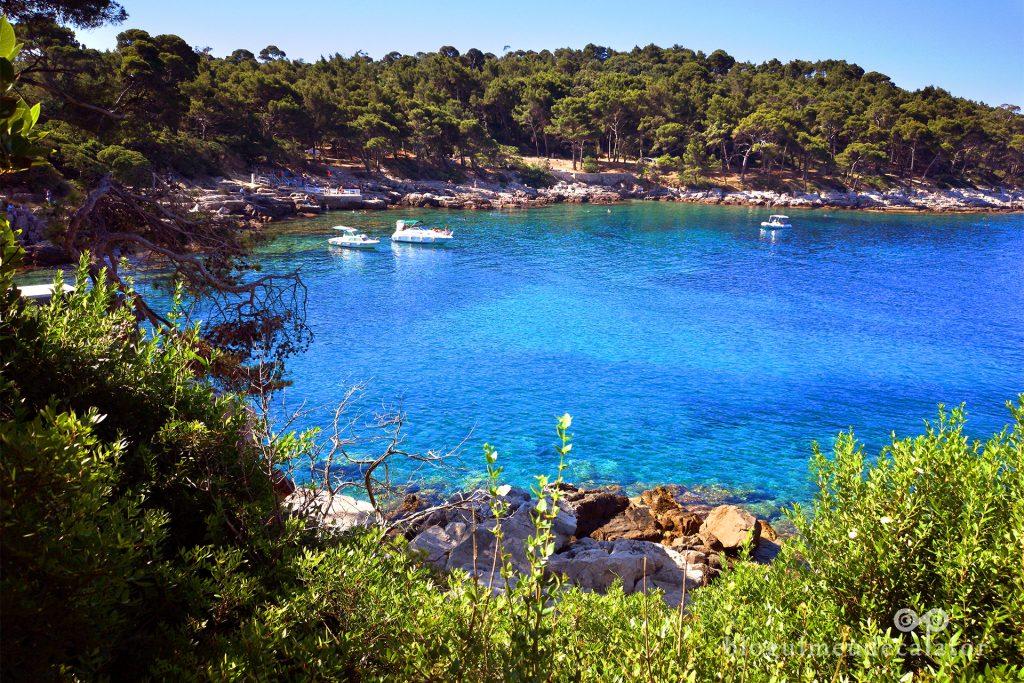 Insula Lokrum Dubrovnik