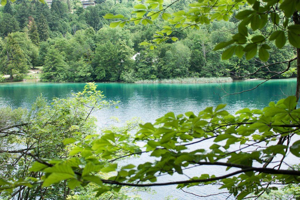 lacuri turcoaz la PLitvice