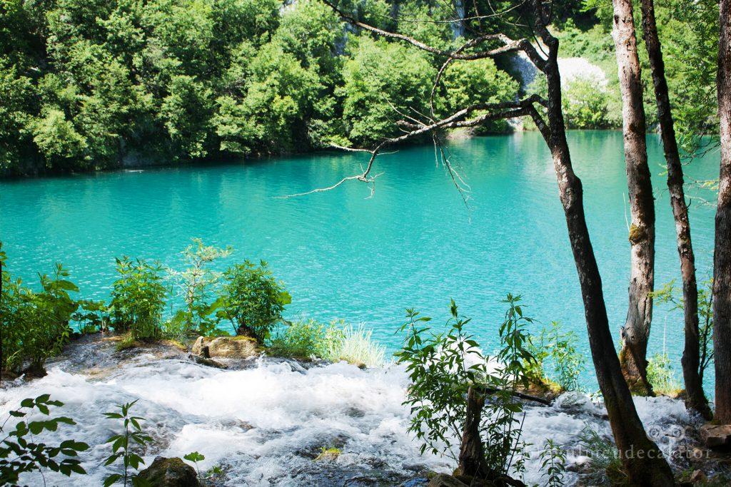 lac cu apa turcoaz la PLitvice