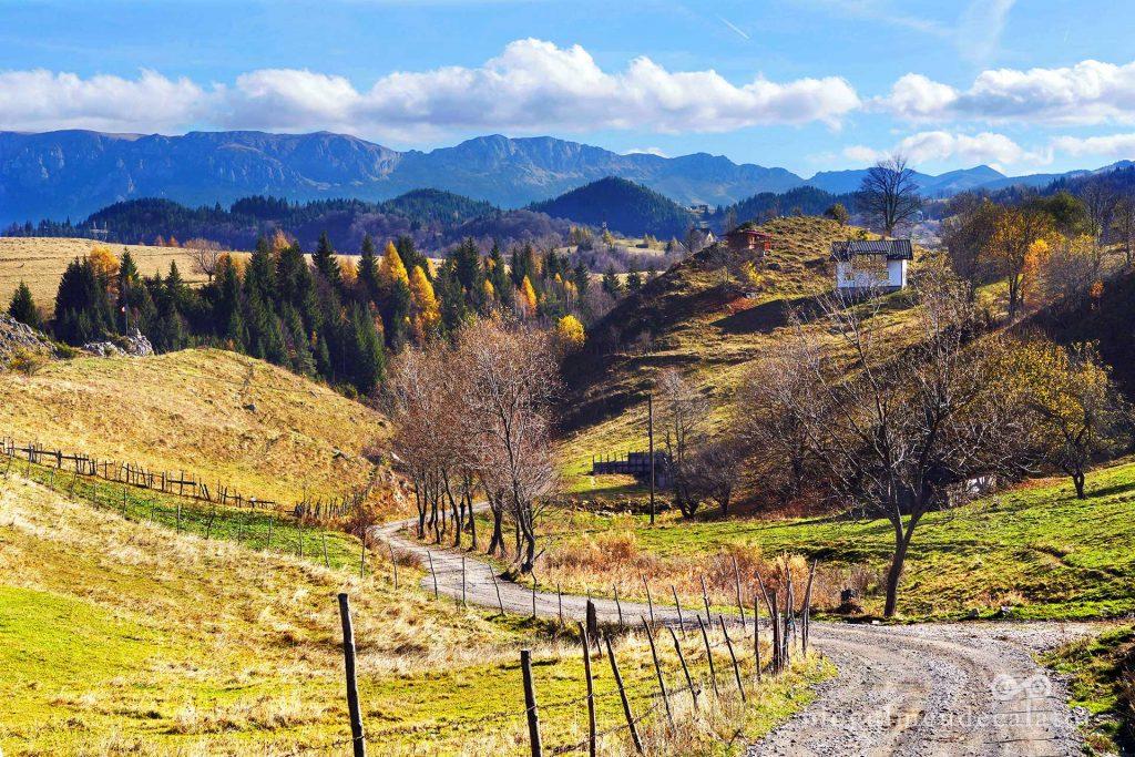 drumuri pustii prin satul Șirnea, Fundata