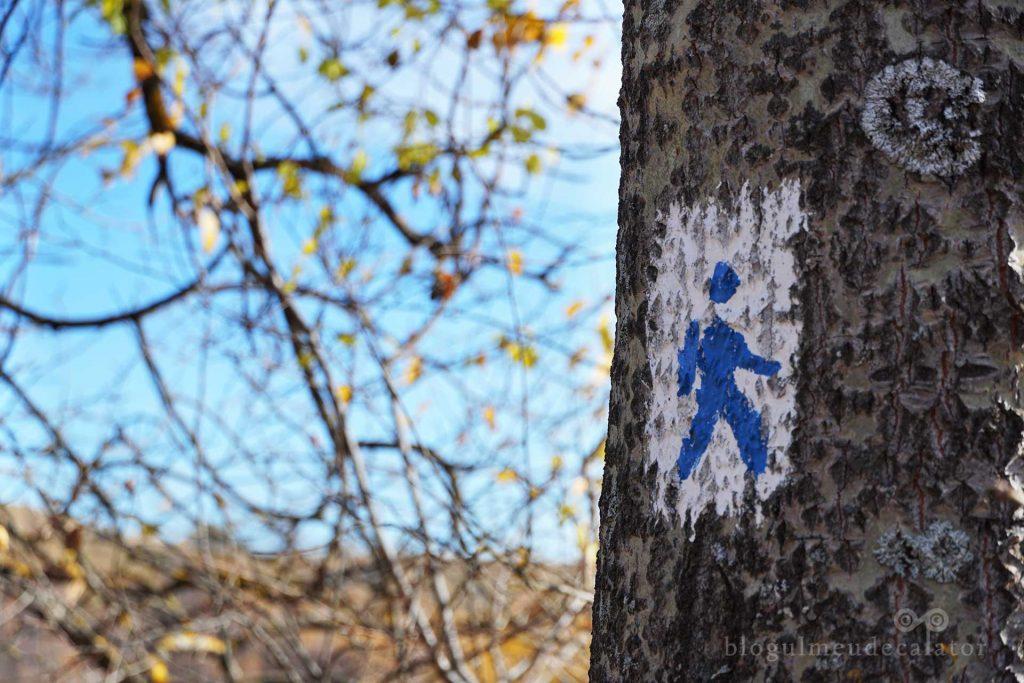 marcaj traseu ecoturistic Hoinăreală prin Șirnea