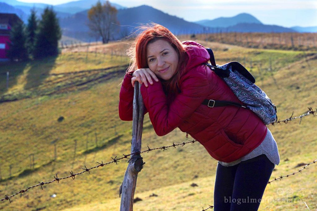 popas pe traseul ecoturistic din Șirnea, Fundata