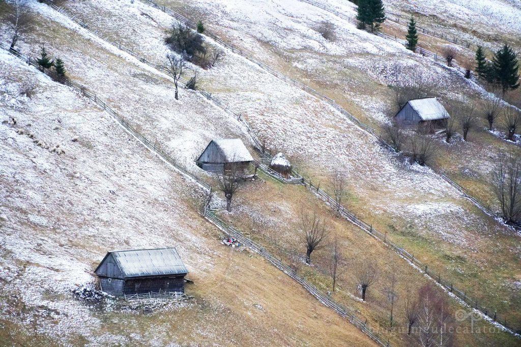 dealurile din Moeciu de Sus