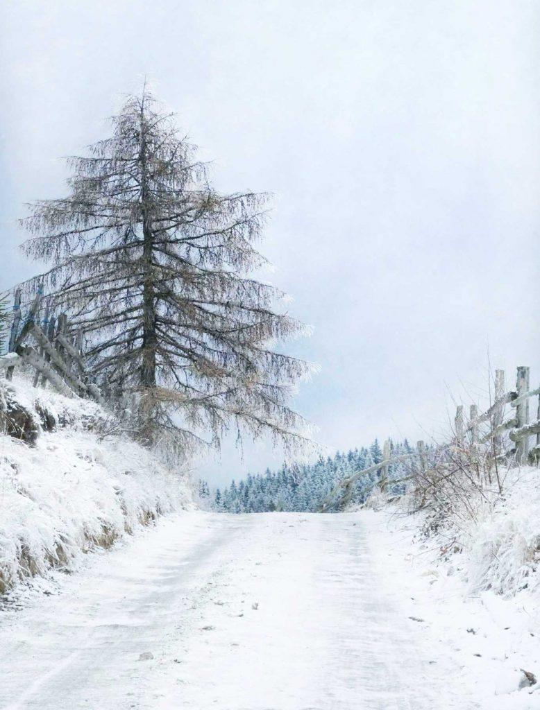 drumuri de iarna in Fundata