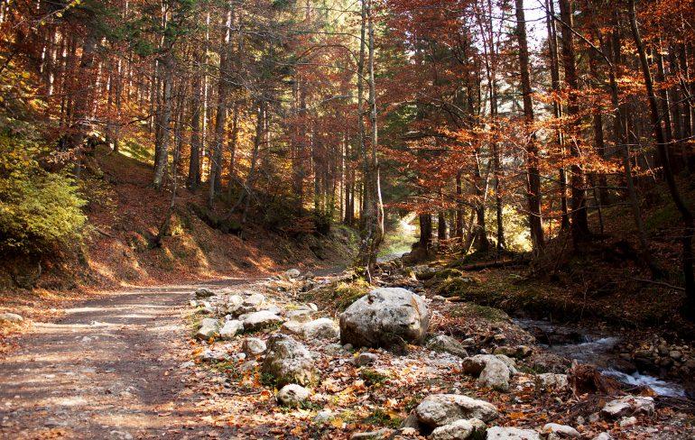 Traseu Dâmbu Morii-Canionul 7 Scari-blogul meu de clalator