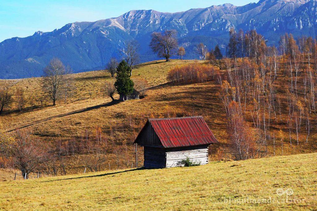 Hoinăreală prin Șirnea