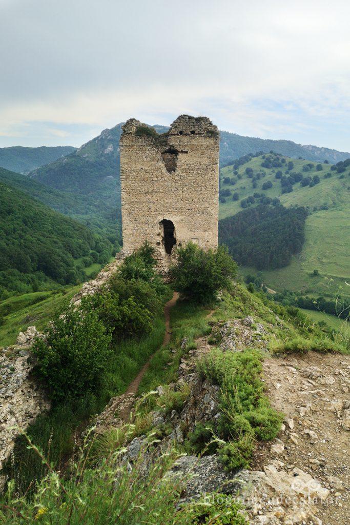 Ruinele Cetatii Coltesti, Alba
