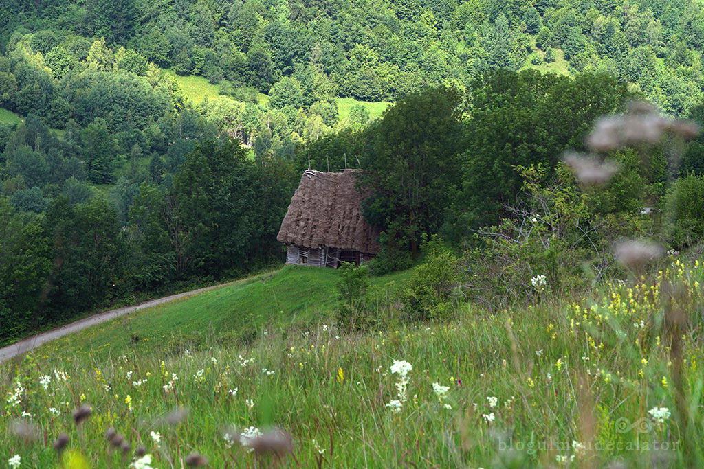 Pe dealurile din Dumesti, Alba
