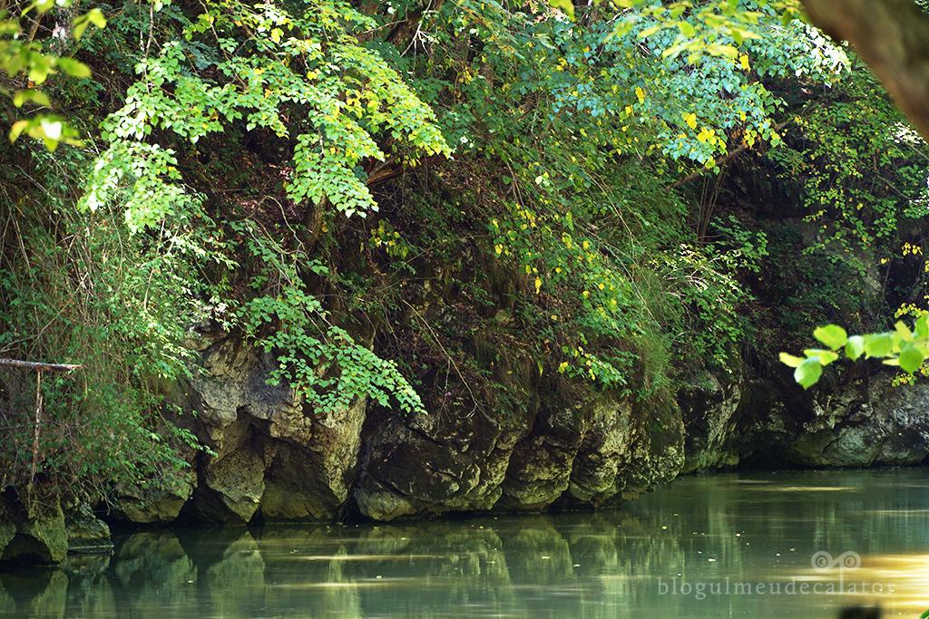 Stanci modelate de apa  pe traseul prin Cheile Varghisului