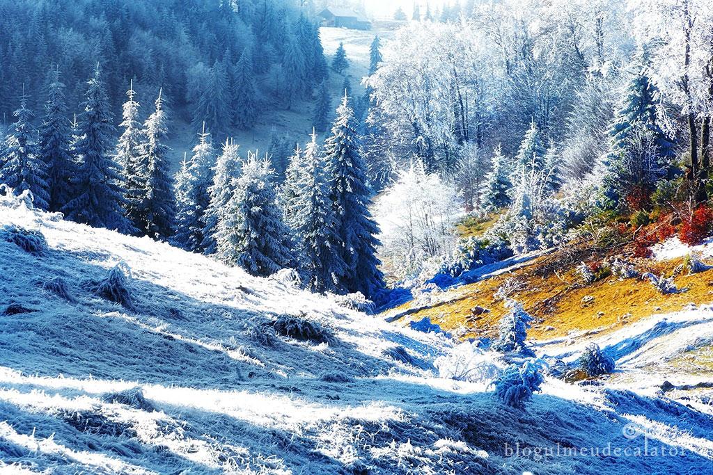 Traseu de iarna prin Vama Giuvala