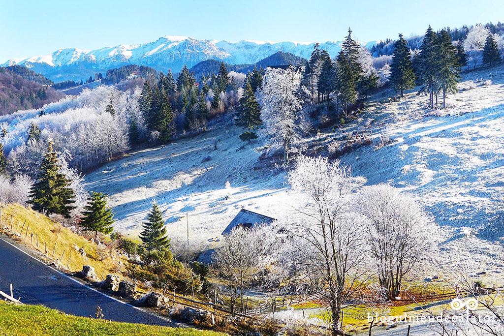 traseu ecoturistic de iarna prinFuundata