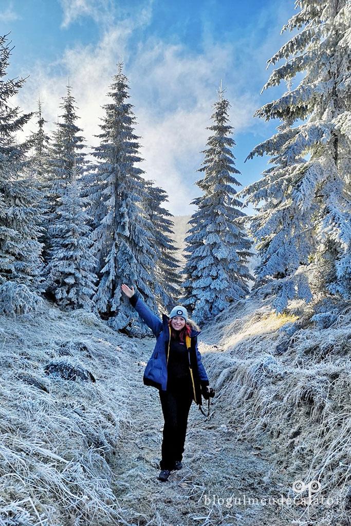 iarna la Fundata-traseu usor de iarna