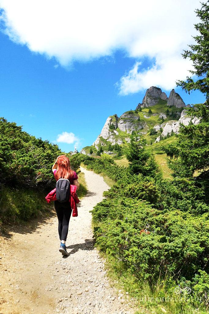 cel mai frumos traseu in muntii Ciucas