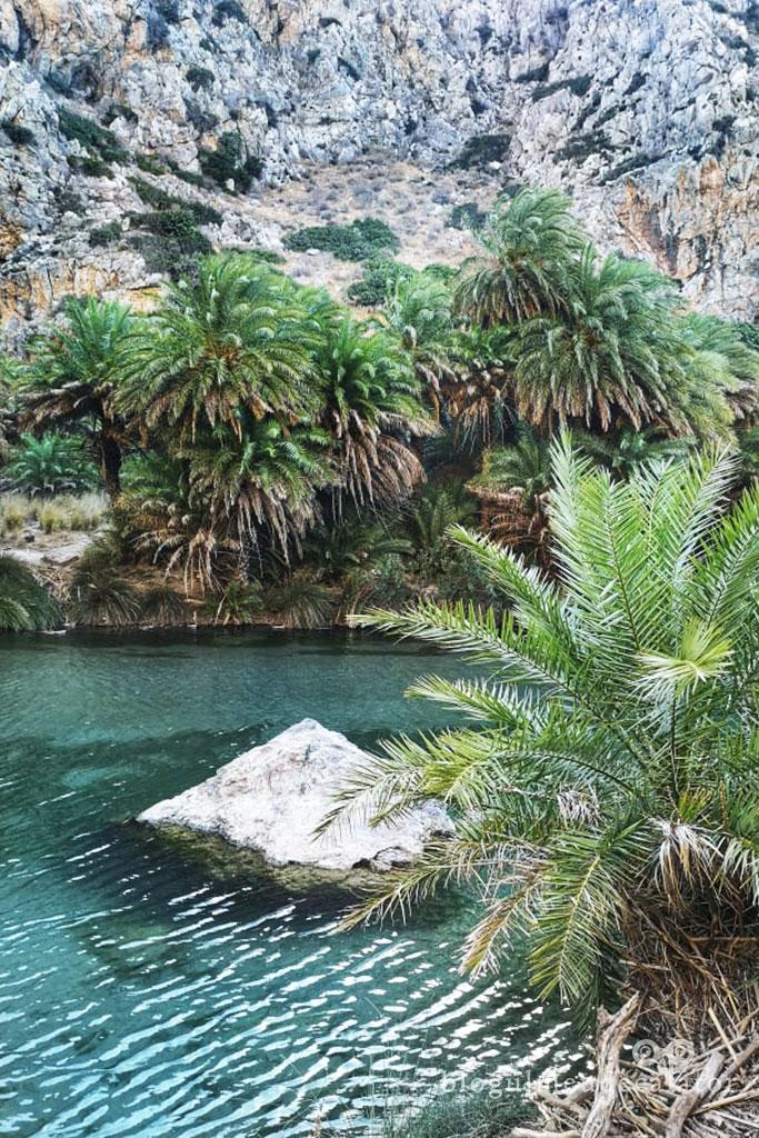 plaje Creta-preveli si padurea de palmieri